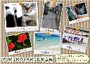 二人写真展、Favorite Cafe にて開催。那覇市パラダイス通り 2010/6/30 〜 7/12